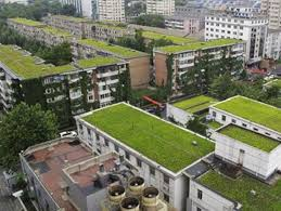 پاورپوینت بررسی سیستم های سبز و فناوری های نوین در معماری